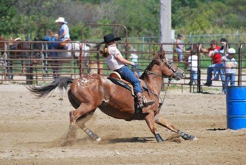 barrel racing  rodeo  horse