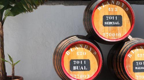 barrels wine wine barrel