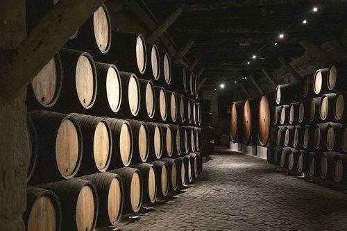 barrels  cava  wine