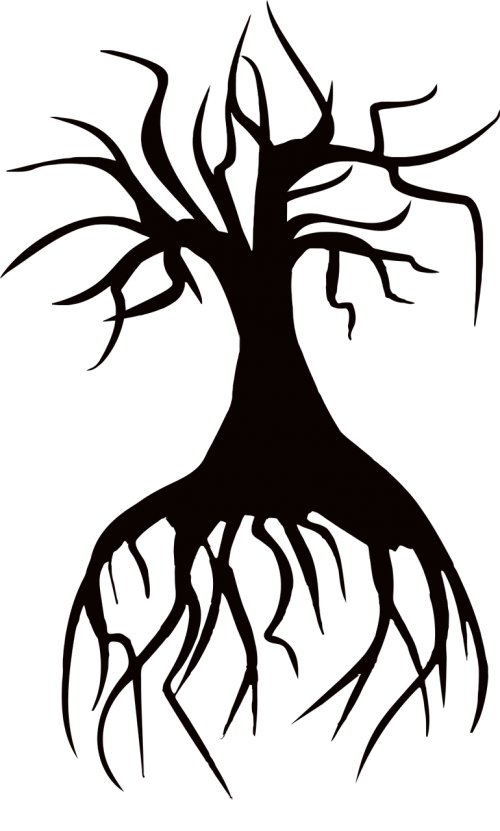 barren dead roots