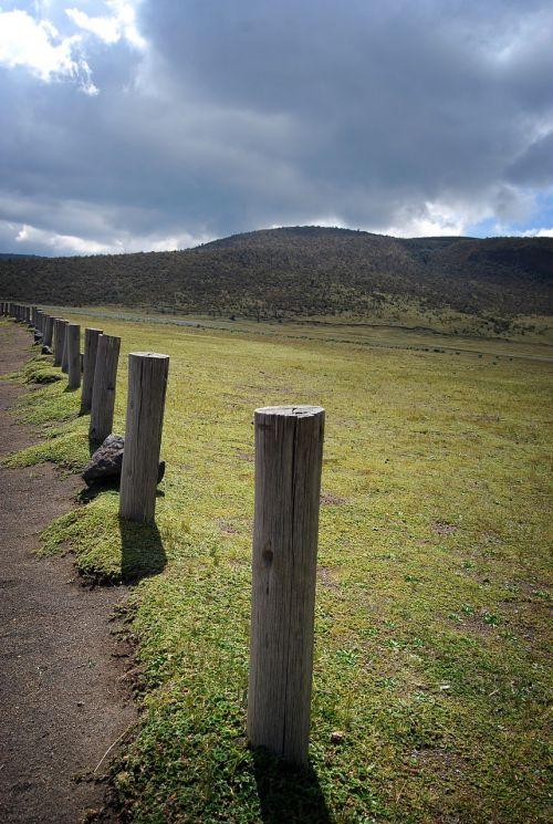 barrier palo landscape