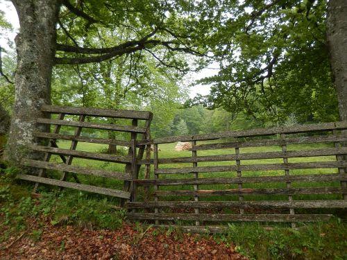 barrier wood rural
