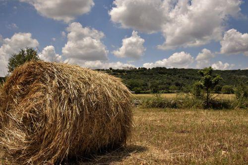 barsento the countryside of puglia puglia
