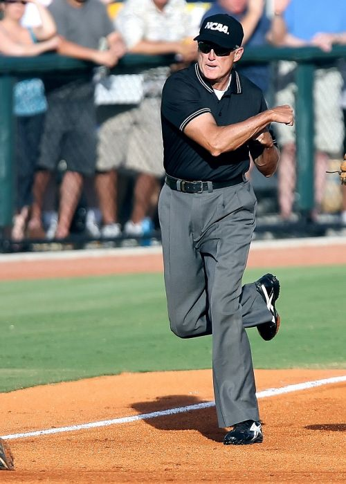 baseball umpire call