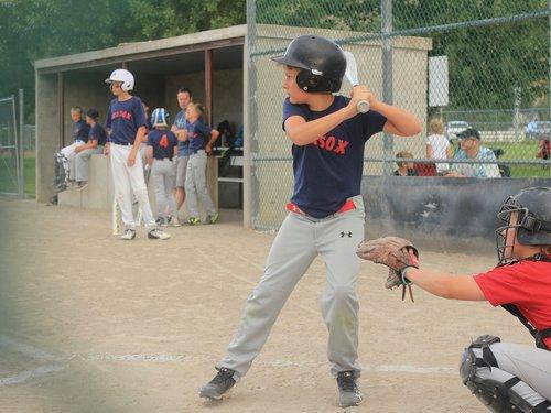 baseball  little league  summer
