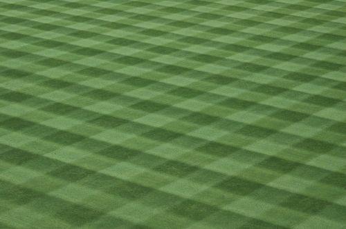 Baseball Field Grass Turf