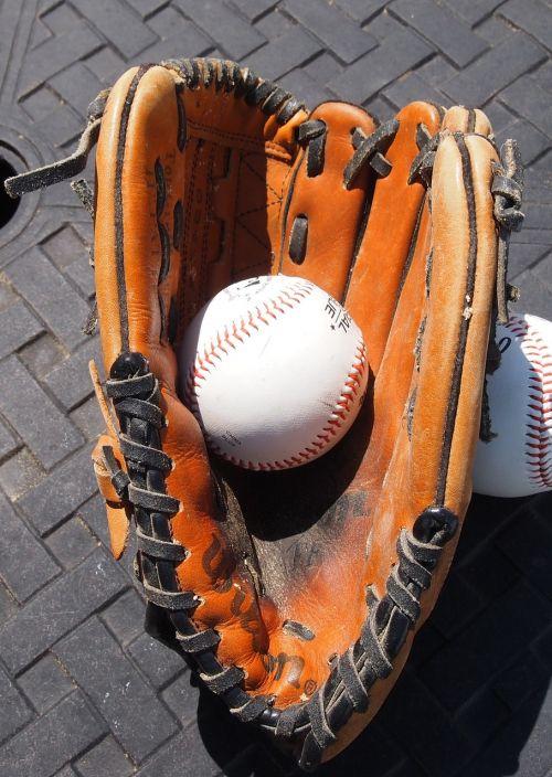 baseball glove baseball sports
