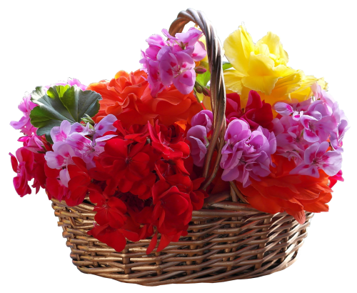 basket bouquet flower