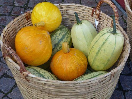 basket pumpkins autumn
