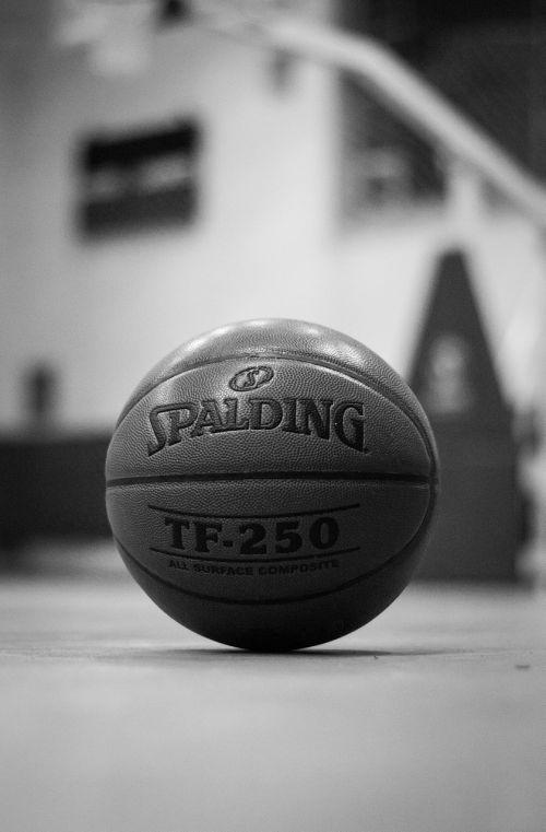 basket-ball ball basketball