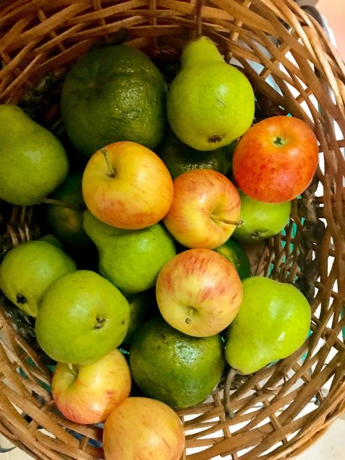 vaisių krepšelis,vaisių pinti dirbiniai,vaisių krepšelis,vaisiai