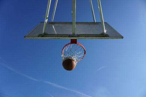 basketball basket basket ring