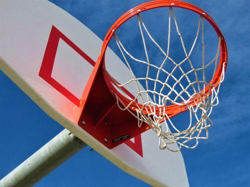 basketball sport basket