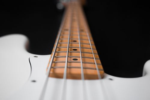 bass guitar instrument