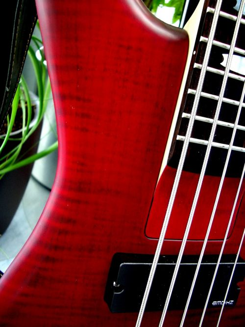 bass e bass 5 string