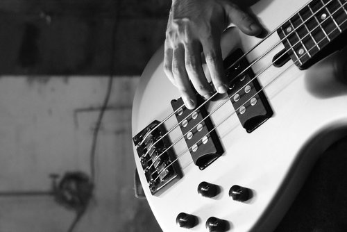 bass  electric bass  bass guitar