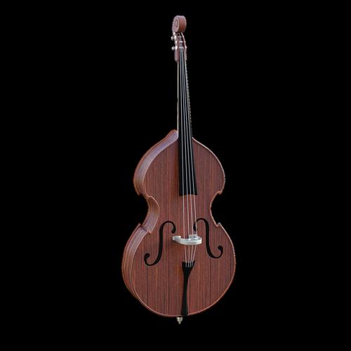 bass  instrument  bluegrass