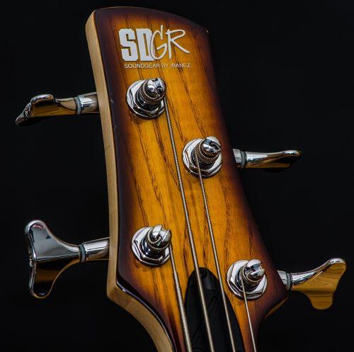 bass guitar bass ibanez
