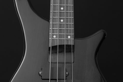 bass guitar bass instrument