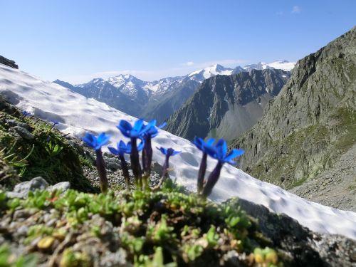 bassler yoke the stubai high-altitude trail alpine