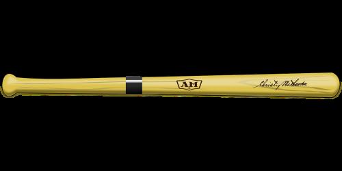 bat baseball equipment