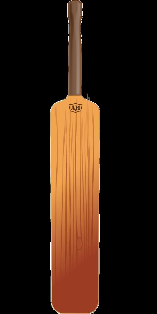 bat cricket equipment