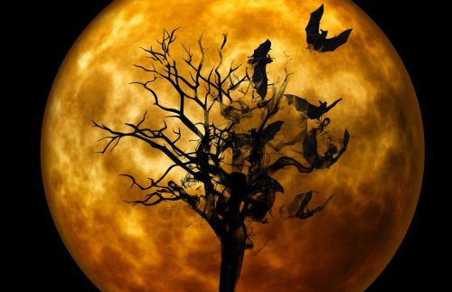 bat night creepy