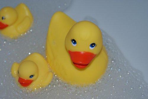 bath duck  toy  plastic