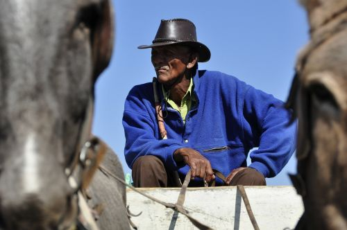 bauer human botswana