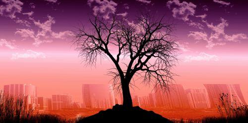 medis, gamta, kraštovaizdis, senas & nbsp, medis, siluetas, debesys, žolė, miestas, panorama, medis fone skyline 02