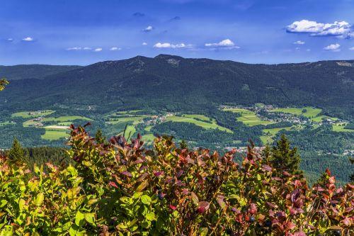 bavarian forest mountain bavaria