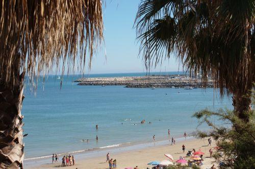 bay beach landscape