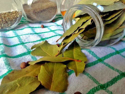 bay leaf spices cooking