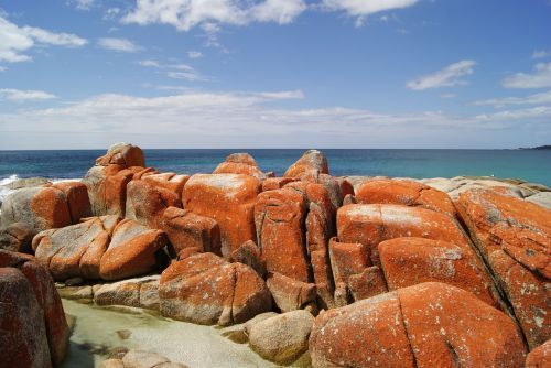 bay of fires tasmania ocean