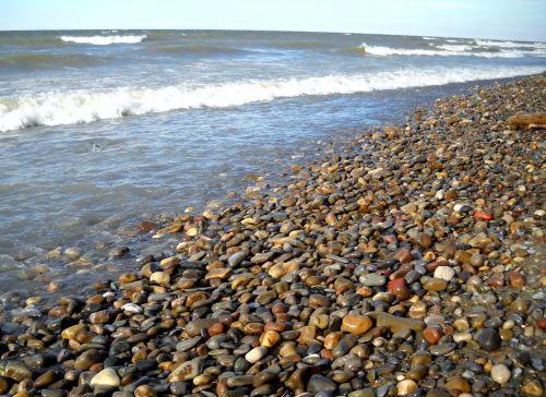 beach shore waves