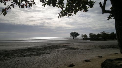beach sandy silhouettes