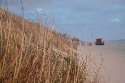 beach abendstimmung sea