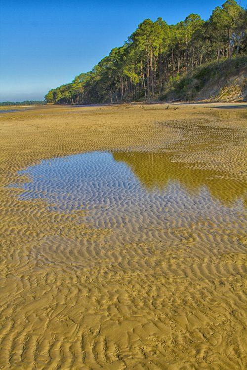 beach low tide sand