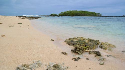 beach ocean tropics