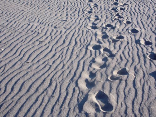 beach,steps,lonely,away,sand,sandy,feet,nature,tracks in the sand,summer,footprints,footprints in the sand,footprint,foot,barefoot,track,sand beach,holiday,trace,reprint,holidays