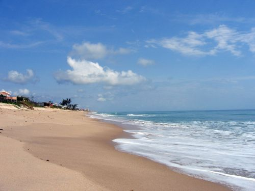 beach florida ocean