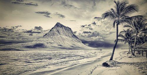 papludimys,kalnas,kalnų paplūdimys palma,palmės,bw,b w,vanduo,jūra,maudytis,vasara,poilsis,rojus,palmių paplūdimys,pėdsakai,pėdsakai smėlyje,šventė