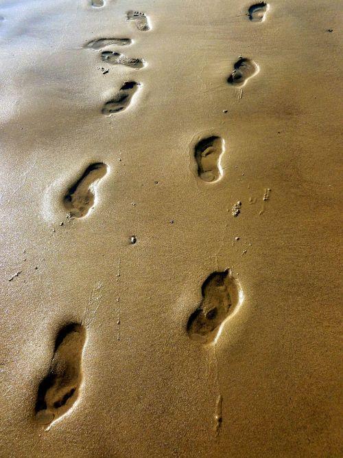 beach sand traces