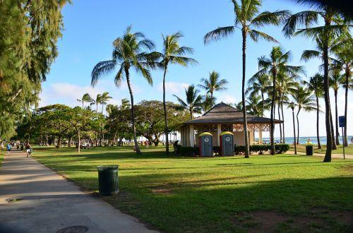 beach hawaii honolulu