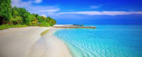 beach sandy beach paradise