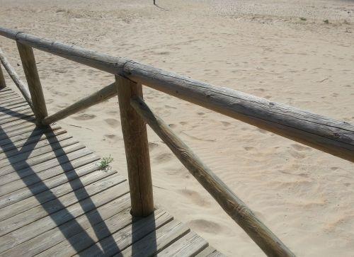 beach web wood