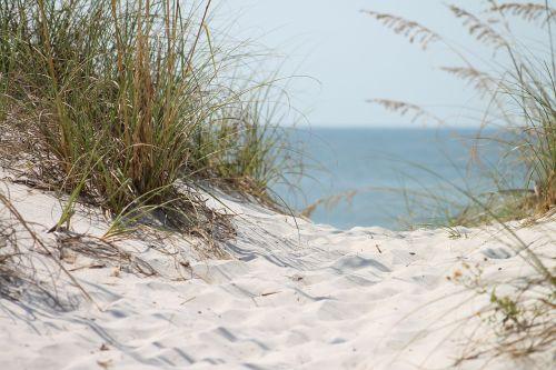 beach ocean grass