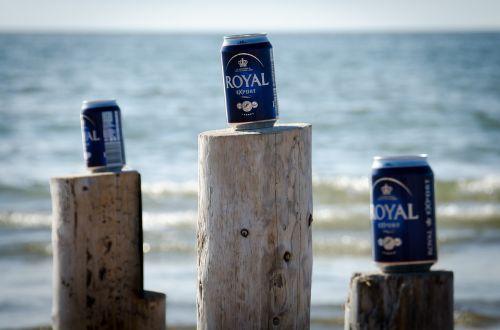 beach beer summer