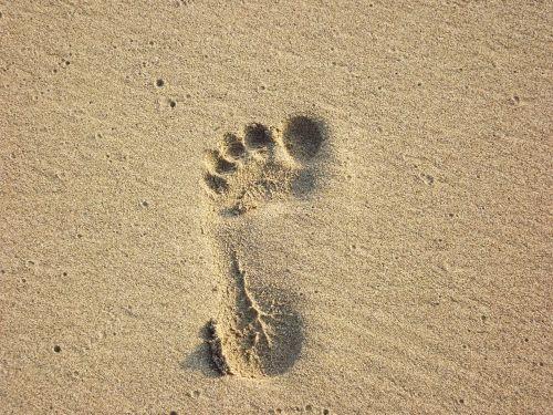 beach foot print sand print