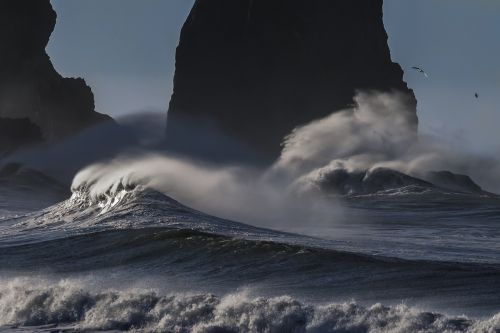 beach pacific coastline ocean